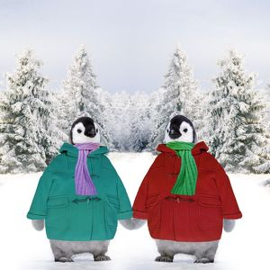 Penguins - in duffle coats & scarves - holding hands - snow scene