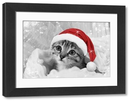 LA-5826-M Cat - kitten wearing Christmas hat Jean-Michel Labat Please note that prints are for personal display purposes only and may not be reproduced in any way