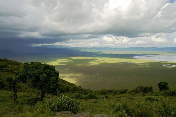 MM-82 Ngorongoro Crater - view from the rim  Tanzania - Africa Michele Menegon Please note that prints are for personal display purposes only and may not be reproduced in any way