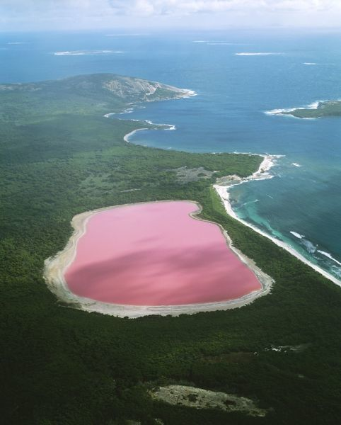 JPF-11641 WESTERN AUSTRALIA - Lake Hillier, Middle Island - Archipelago of the Recherche