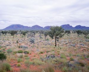 Australia - Kata Tjuta (the Olgas) from the South in rainy conditions