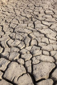 Cracked Earth parched by the sun and drought