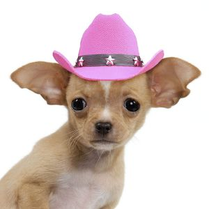 Cute Chihuahua puppy dog wearing a pink cowboy hat