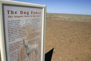 The Dog Fence - longest dog fence in the world