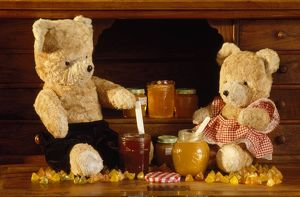 FRR-255 Teddy Bear - with honey and jam