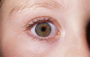 GirlOA³ EYE - close-up of single hazel eye