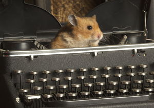 Golden Hamster in a typewriter