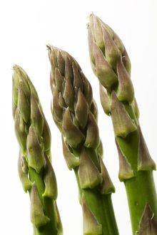 Green Asparagus - close-up of tips