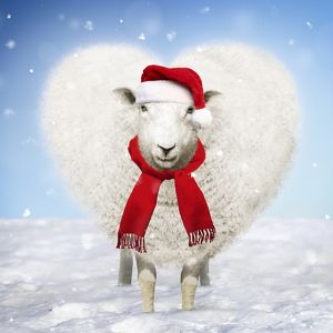 Heart shaped Sheep wearing a red Christmas Santa hat and scarf