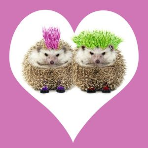 JD-20232-M2 Punk girl and boy Hedgehog - in pink heart shaped frame.