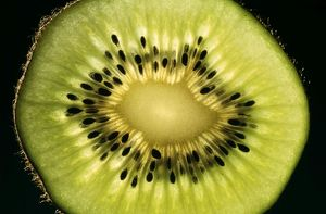 KIWI Fruit - cross section showing seeds