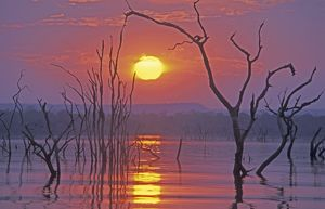 Lake Kariba - Sunset over drowned trees