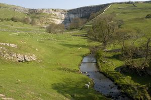 Malham Cove and the river issuing from it.