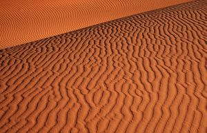 Namib - Naukluft Park; structural forms in the sand of the deser