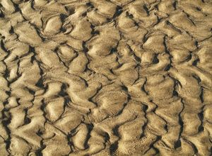 Patterns in the sand of a beach at the Atlantic Ocean