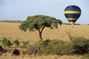 Safari, Hot-air Balloon