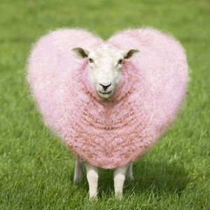 Sheep - Ewe - pink heart shaped wool
