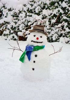 Snowman - with scarf & hat in winter scene