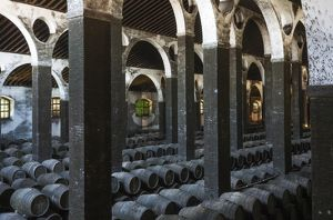 Stacked oak barrels in the cellar La Catedral at the B