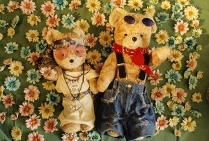 Teddy Bear - x2 teddies in flowers