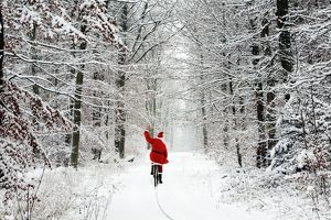 USH-4674-M Father Christmas - riding bicycle through beech woodland - coverd in snow