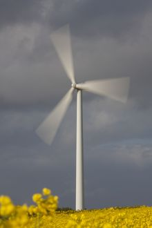Wind Turbine generating power on a wind farm