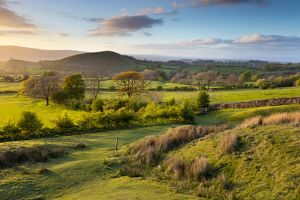Worston Moor - Evening landscape at sunset, Lancashire - UK